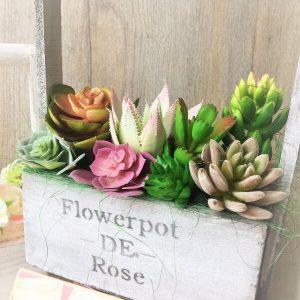 pozsgás és rózsás láda dekoráció